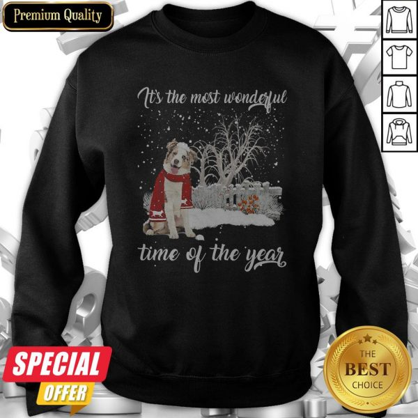 Australian Shepherd It's The Most Wonderful Time Of The Year Sweatshirt