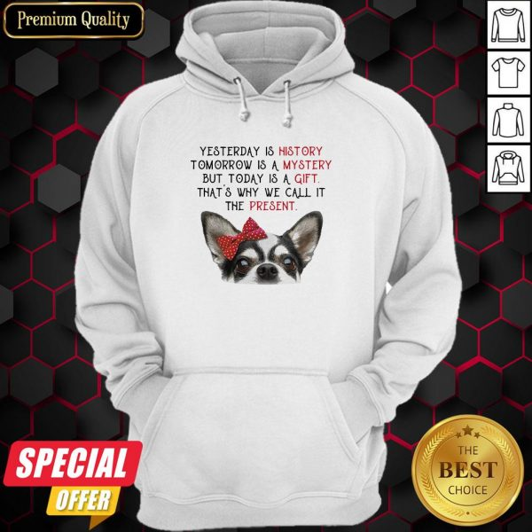 Chihuahua Yesterday Is History Tomorrow Is A Mystery But Today Is A Gift That's Why We Call It The Present Hoodie