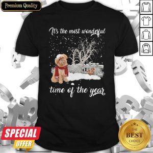 Griffon Bruxellois It's The Most Wonderful Time Of The Year Shirt