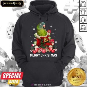 Funny Parrot Ornament Decoration Christmas Tree Tee Xmas Gifts Hoodie- Design by Meteoritee.com