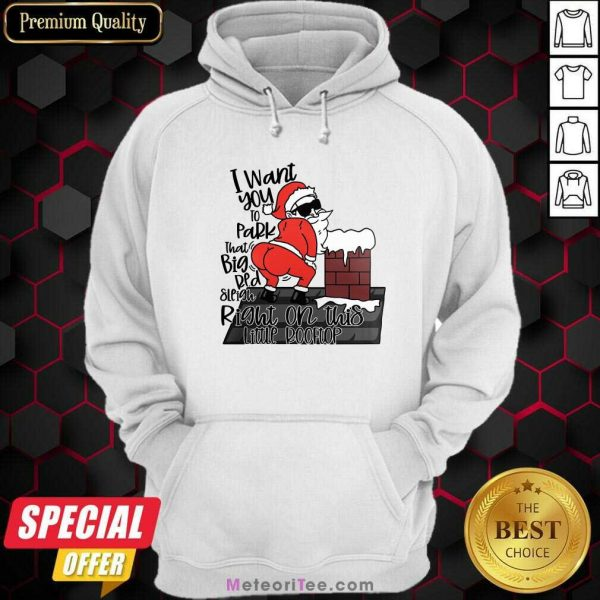 Santa Claus I Want You To Park That Big Red And Light Right On This Rooftop Christmas Hoodie - Design By Meteoritee.com