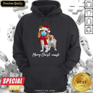 Cavalier King Gorgeous Merry Christ Mask Merry Christmas Light Hoodie - Design By Meteoritee.com